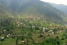 Kashmiri village and rice fields