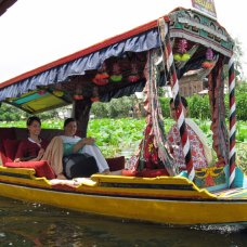 Shikara Ride on Dal Lake