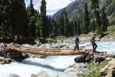 Log bridge crossing on a trek in Kashmir
