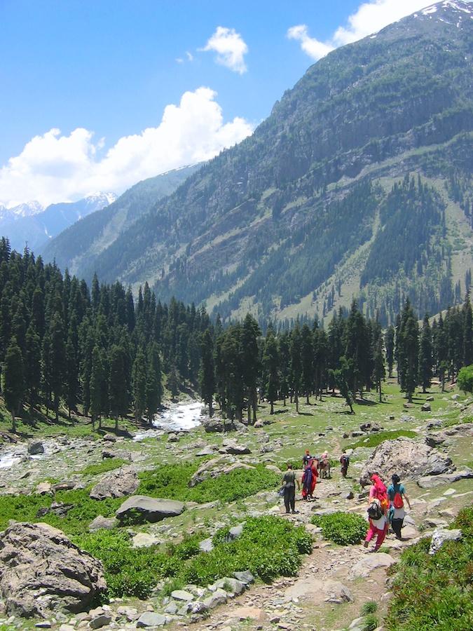 Near Lidderwat campsite on Aru-Kolahoi Trek, Kashmir