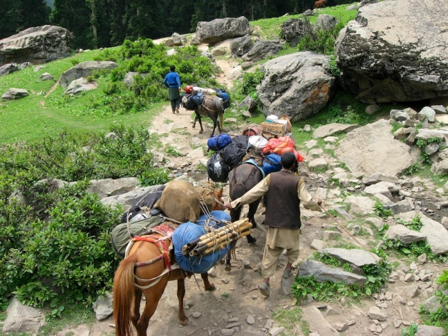 Ponies carrying our bags, tents, & food for the trek